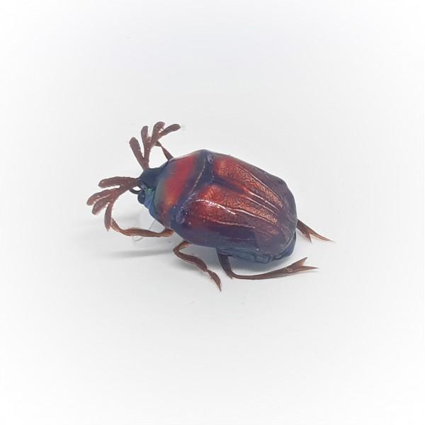 Майский жук SG-00 (уменьшенный размер)