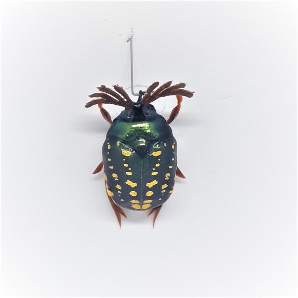 Майский жук SG-08 (уменьшенный размер)