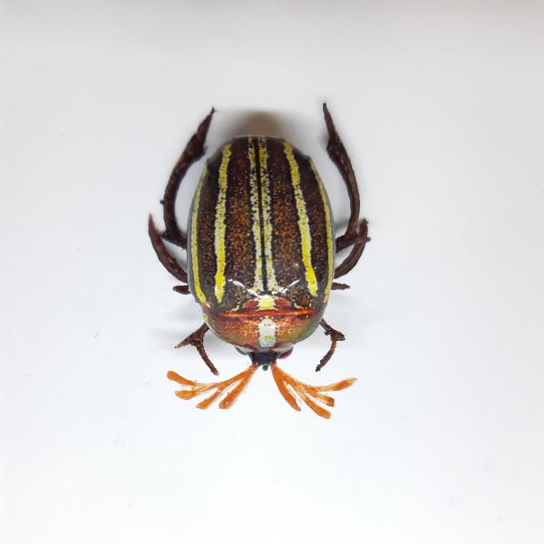 Майский жук BG-26